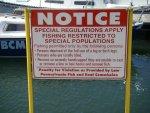 Strange fishing rules