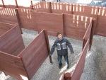 David in the maze